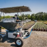 Cost-Effective Weed Control in Container Nurseries